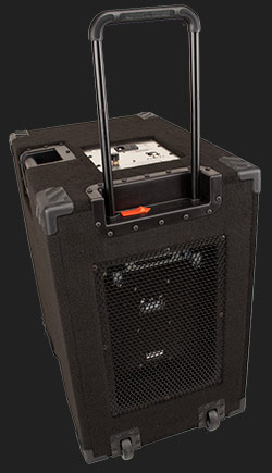 bass guitar power amp & powered bass speaker cabinets. 1000 Watt Compact, Portable  Hi End, High Powered, Crystal Clear, Full Range 2×10 Bass Cabinet (40 Hz – 20 KHz & does the job of a 4×10) that only requires a pre-amp, your bass & yourself.