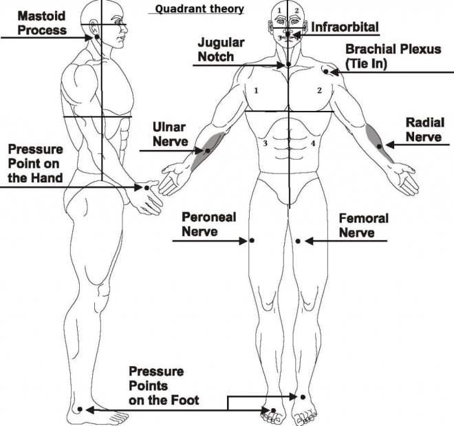 Illustration of Tenketsu Quadrants