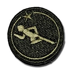 IPPT Gold Badge