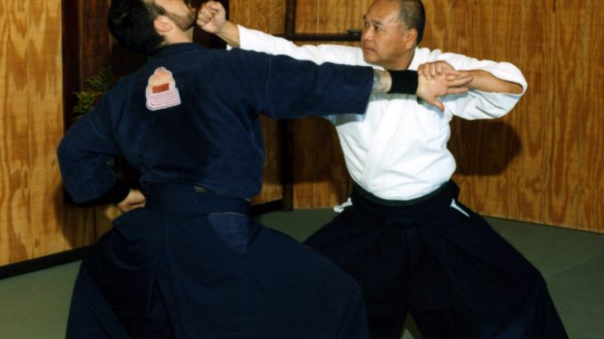 How did Modern Ninjutsu & Ninja Martial Art Schools Evolve