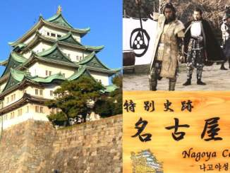Nagoya Castle with Samurai & Ninja Re-Ennactments (Japan Travel)