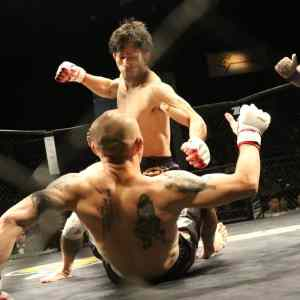 Mixed Martial Arts in the Octagon