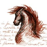 WTN_dessin-cheval-felipe