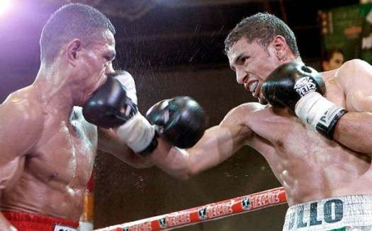 Pollo Lopez to Defend Interim WBA World Super Featherweight Title