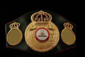 WBA world title reduction plan has made important advances