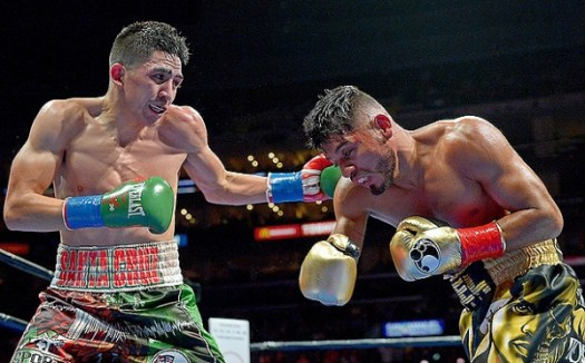 Santa Cruz won the WBA title in his last fight, scoring a majority decision over Abner Mares. (Photo: Jayne Kamin-Oncea/USA Today)