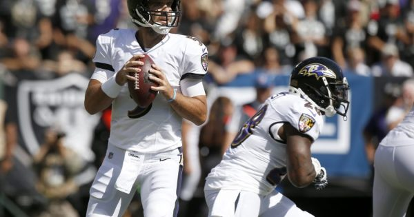 Baltimore Ravens QB Joe Flacco