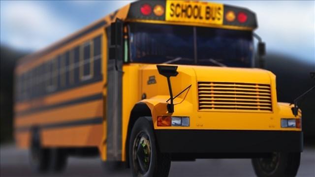 SCHOOL BUS_1544567442965.jpg.jpg