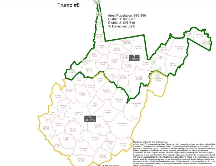 Watch Present U.S. Reps. Carol Miller & David McKinley announce plans to run in WV's new congressional districts – Google U.S. News