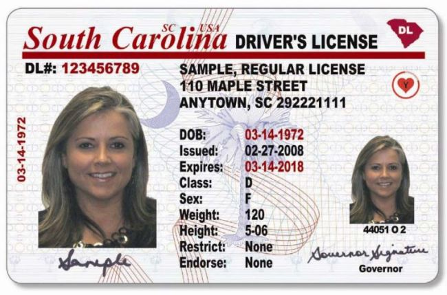 sample-sc-drivers-license_333995