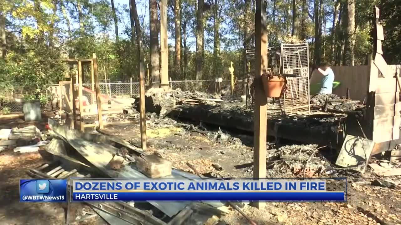 78_Animals_Killed_in_Barn_Fire_8_20181130041343