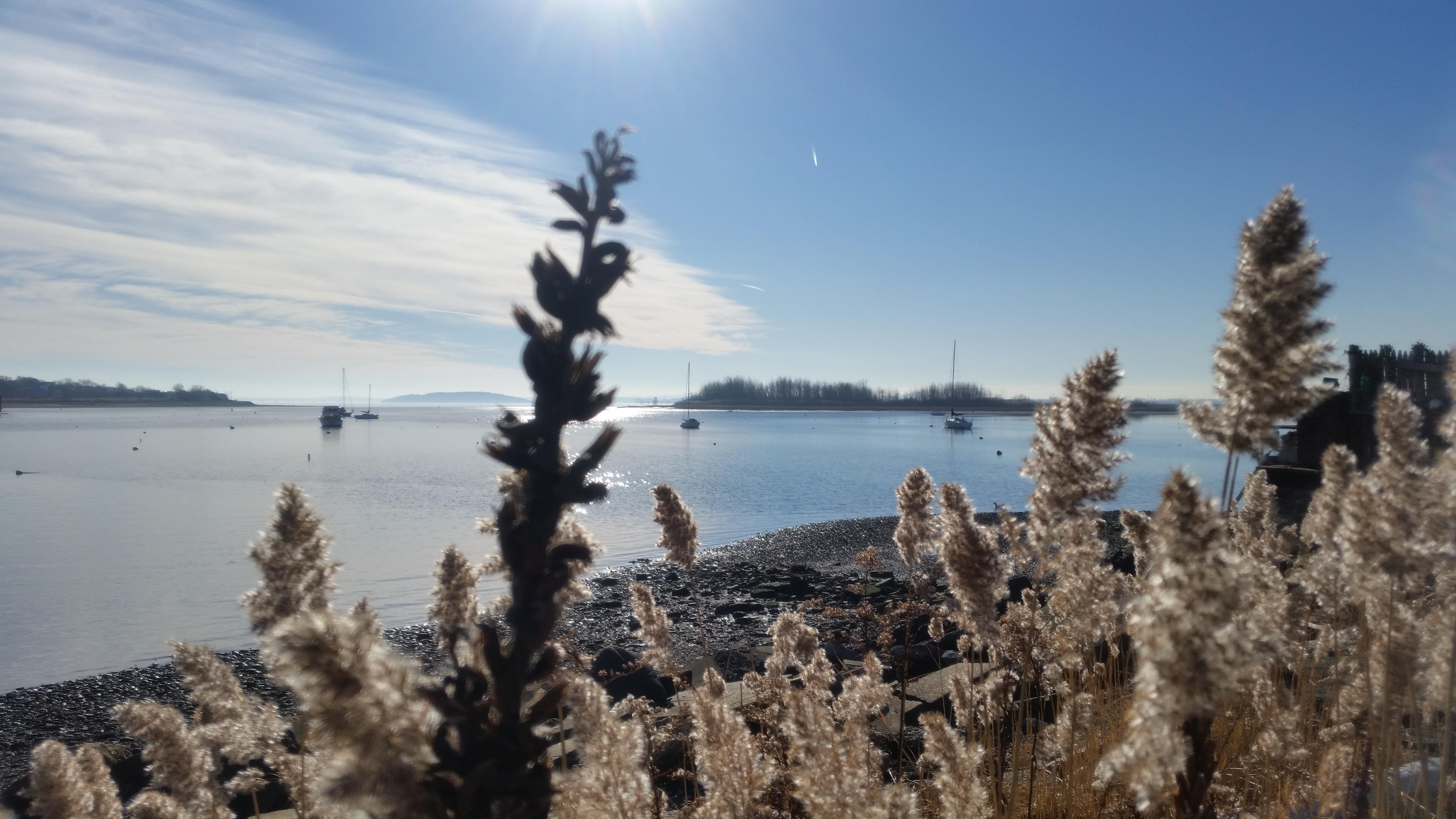 Winthrop-Harbor-12_15-four