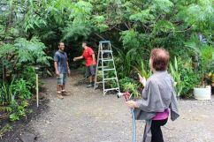 7_14_18 tree cutting crew2