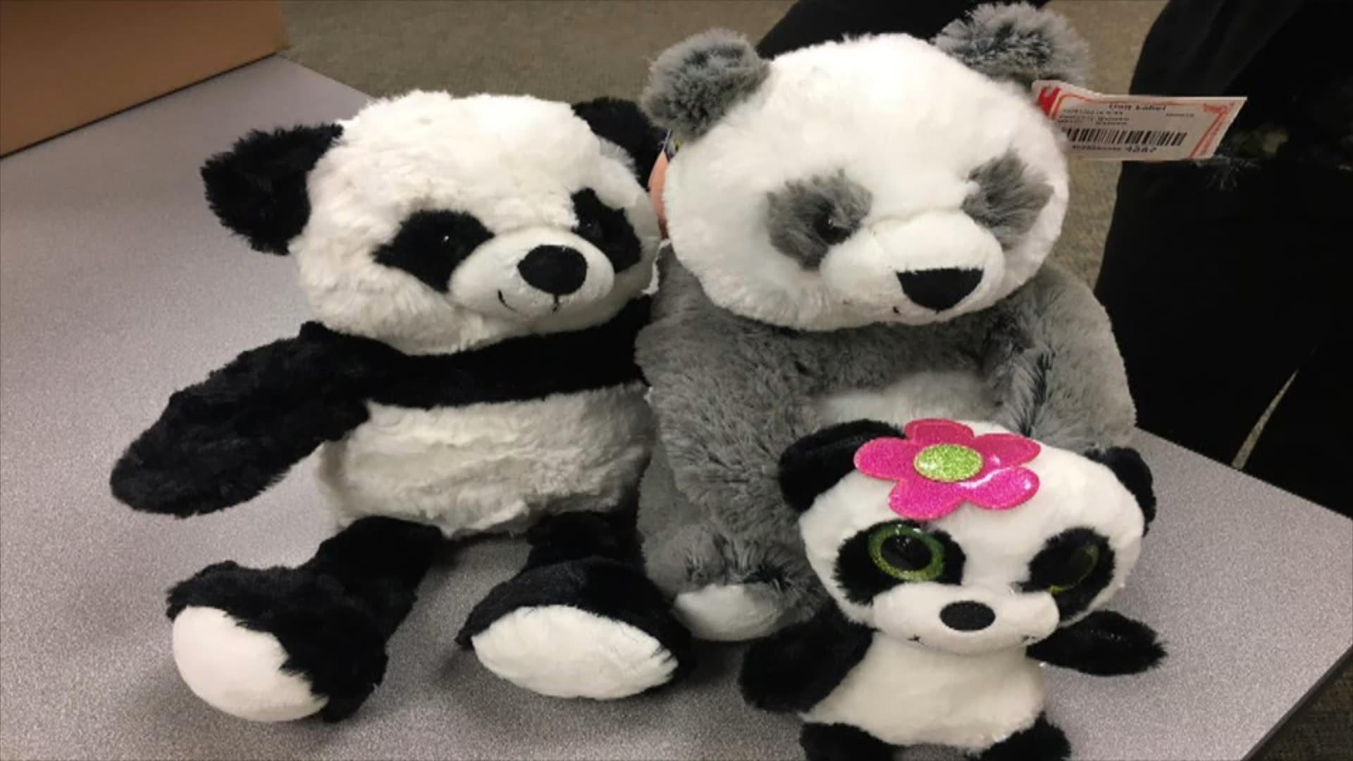 sorority pandas_1494020825482.jpg