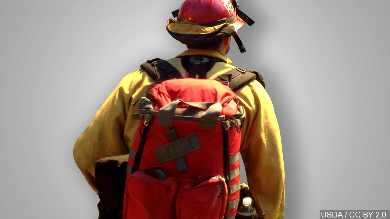 firefighter generic update bjs