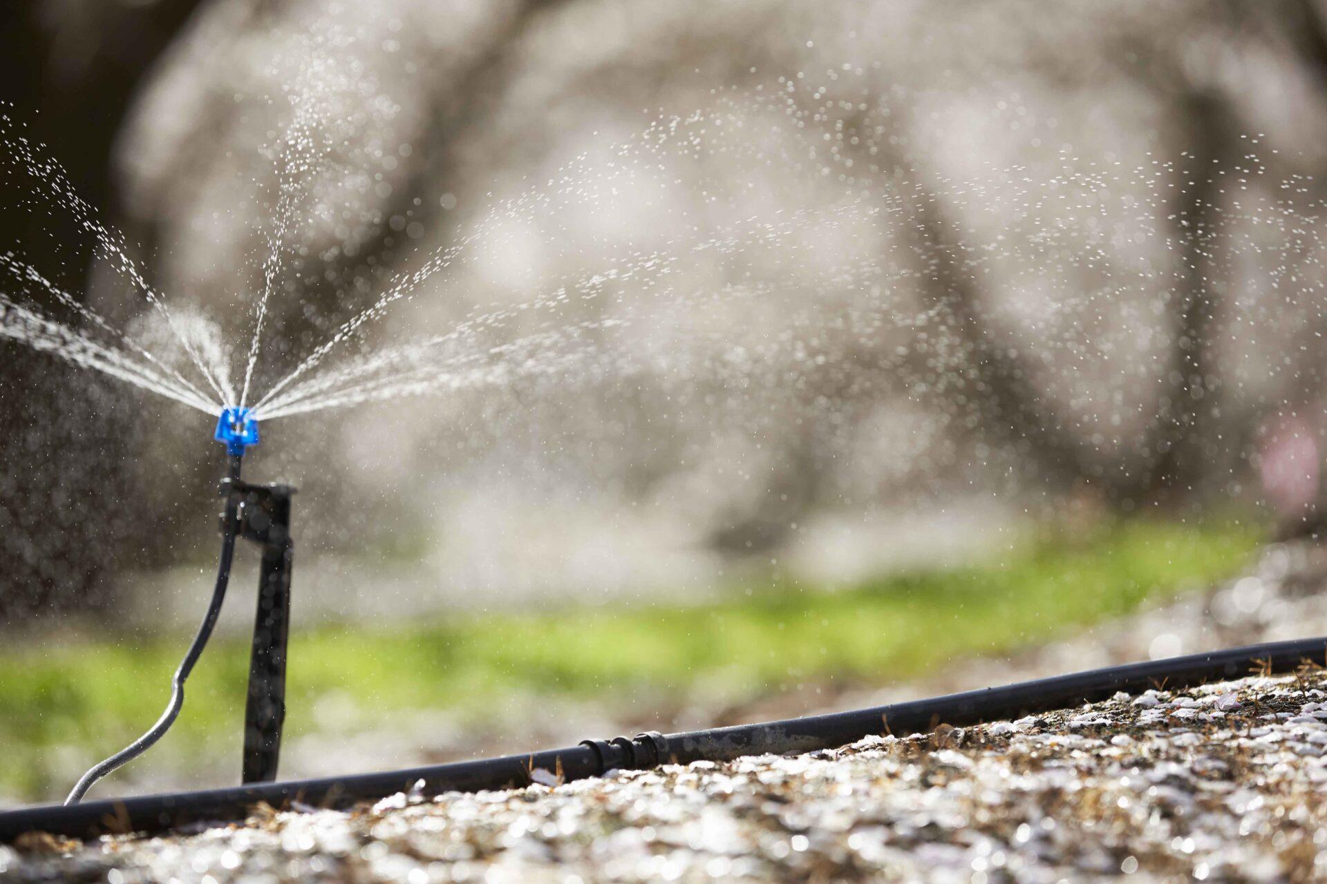 Water Use Calculator Worksheet