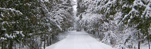 West Carleton trails