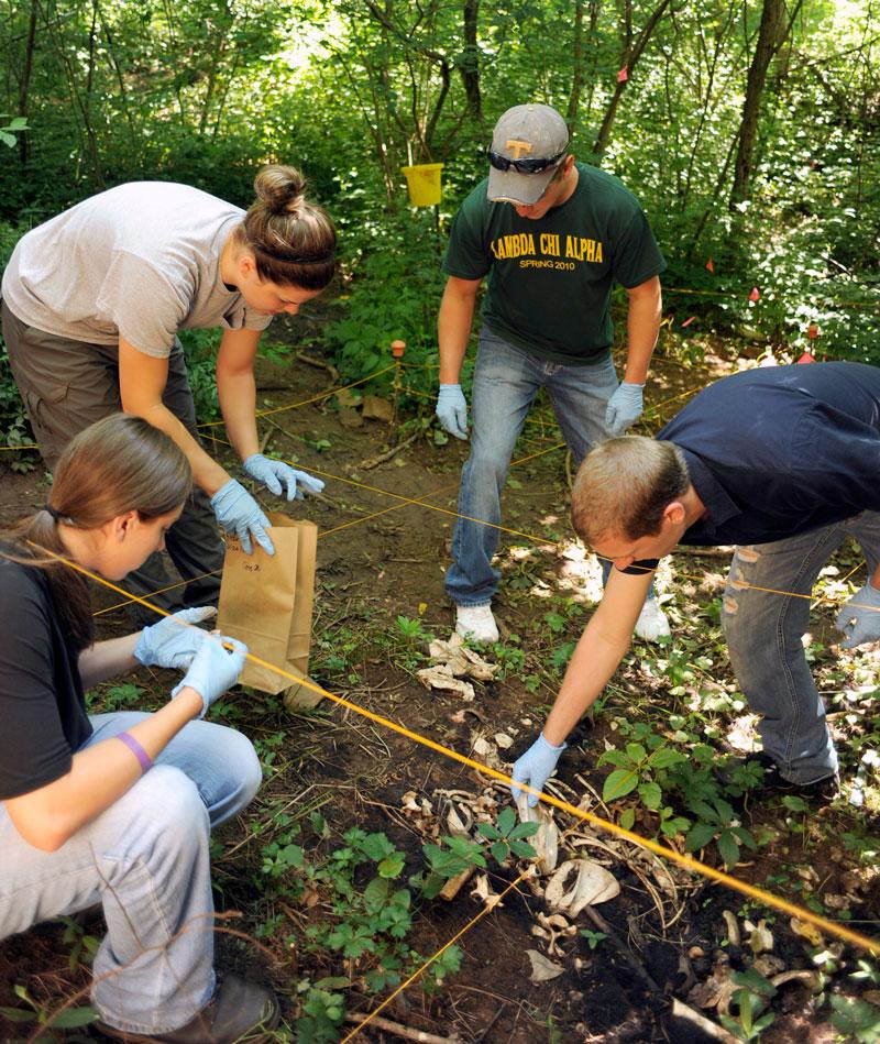 Western Carolina University Forensic Anthropology Program