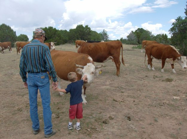 Teaching a new generation