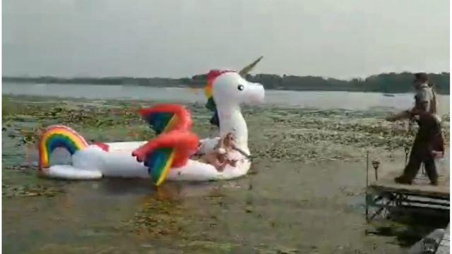minnesota unicorn rescue_1534112125935.jpg_51579326_ver1.0_640_360_1534162214818.jpg.jpg