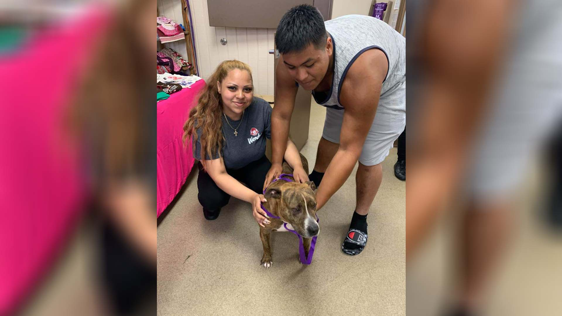 dog reunited with its family