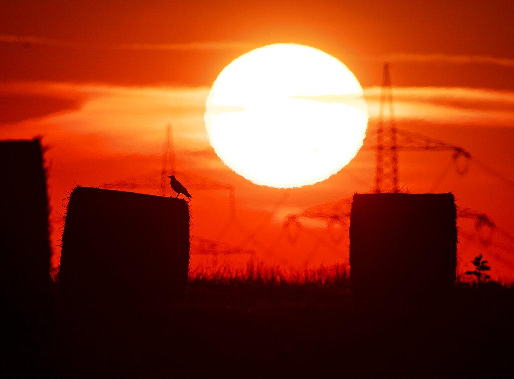 Germany July Heat Record
