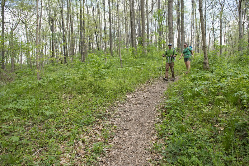 Five Rivers MetroParks 'Healing Nature'