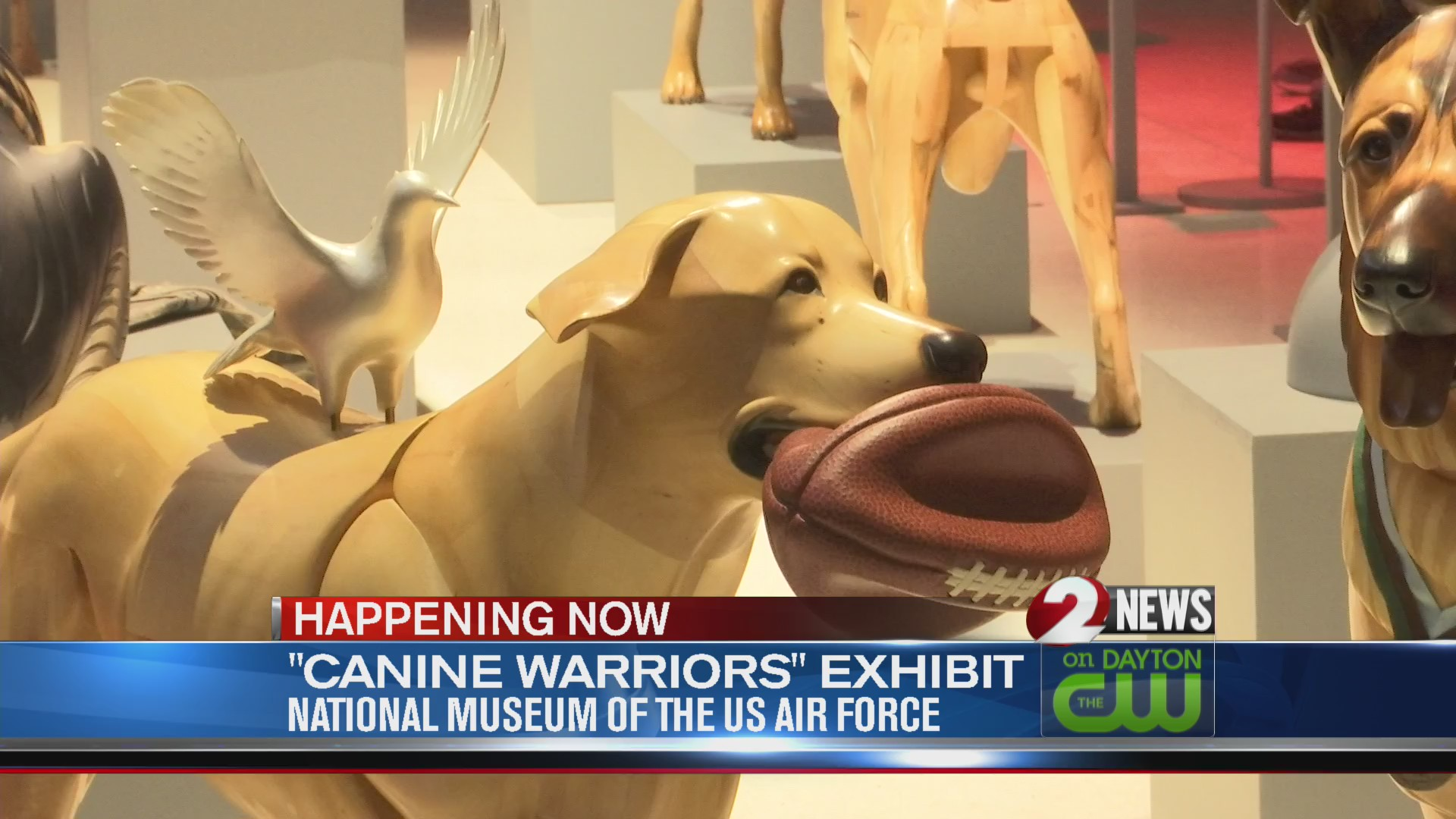 Canine Warriors exhibit