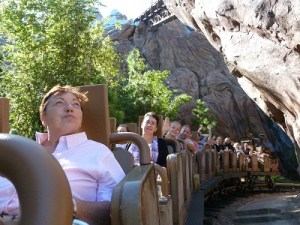 expedition_everest.2jpg