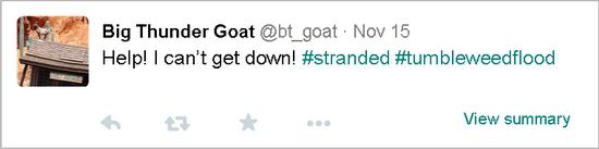 Big Thunder Goat1 - kf