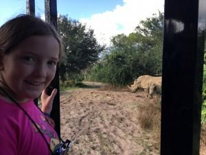 Rhinos Wild Africa Trek Kristin Fuhrmann Simmons Disneyworld Animal Kingdom