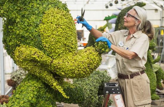 mickey topiary at epcot - disney