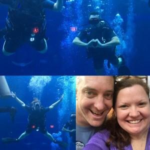 Scuba Diving Disney S Epcot Divequest What To Expectwdw Radio