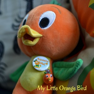 Orange Bird WDW Radio Disney Collections photos by Kristin Fuhrmann Simmons