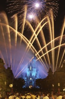 Wishes Fireworks - disney