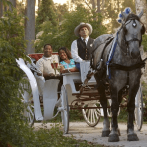 Carriage Ride at Fort Wilderness Campground, copyright Disney