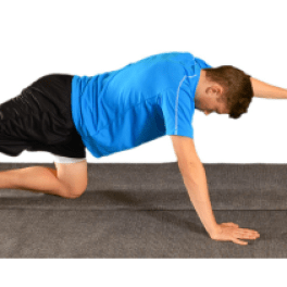 Quadruped Alternate Arm and Leg
