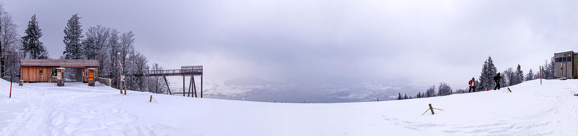 Panoramablick auf den Traunsee vom der Bergstation des Grünbergs aus