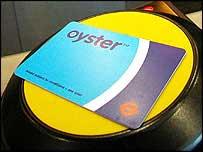 _39355240_oyster203.jpg