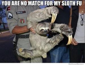 sloth-meme-fu