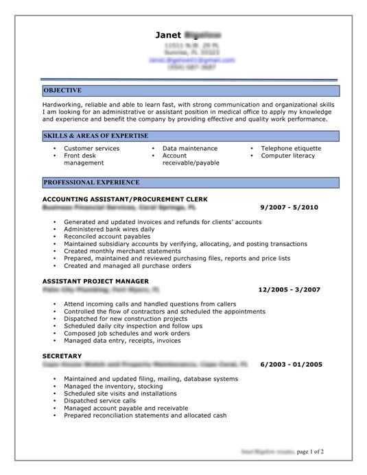 best resume format for it professional perfect resume 2017 - Sample Professional Resume Format