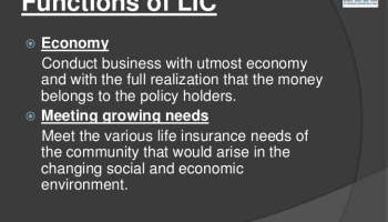 functions of LIC