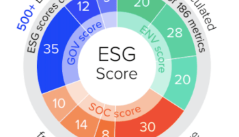 Check ESG Score