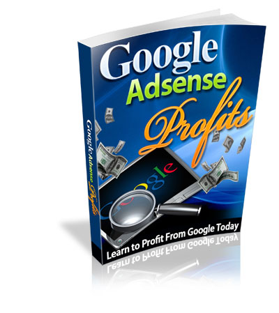 google-adsense-profits