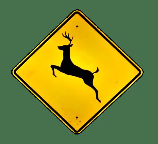 deer_1543628846492.png
