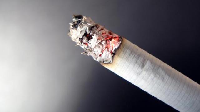 OTD November 20 - tobacco_1747145835193479-159532