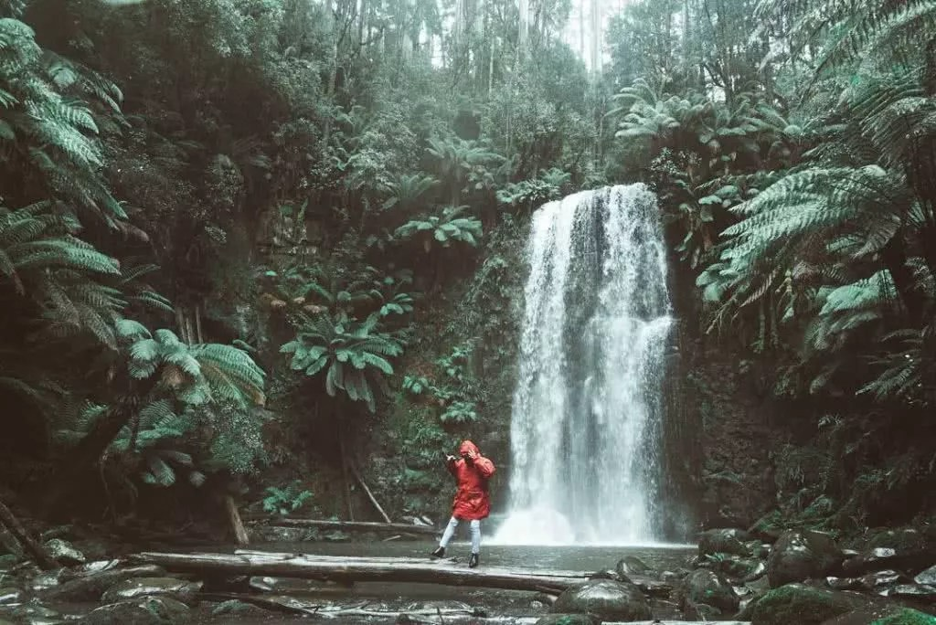 "Microadventures with @levicaleballan 4/5 ""This day was an especially wet day. I asked my niece to throw on my iconic red jacket and to jump in the frame. She ended up slipping on the log and falling in a second after this shot."" #weareexplorers"