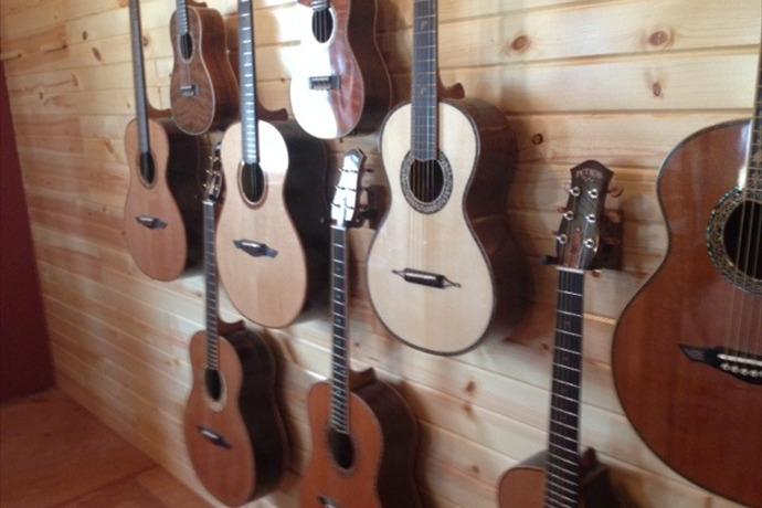 Petros Guitars_-7715906264963330963