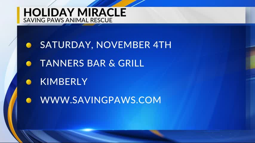Saving Paws Animal Rescue