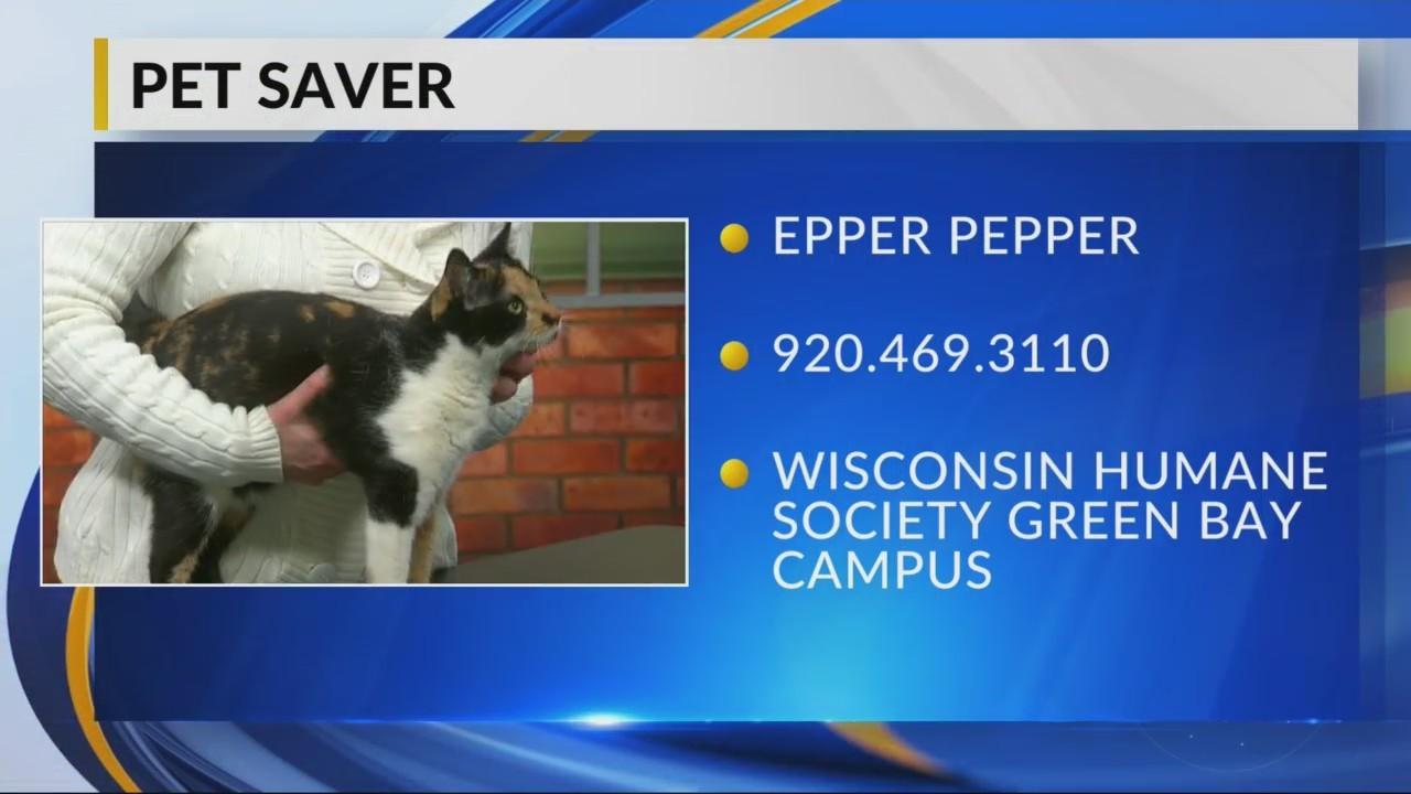 Petsaver: Epper Pepper